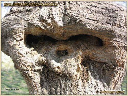 wood alien