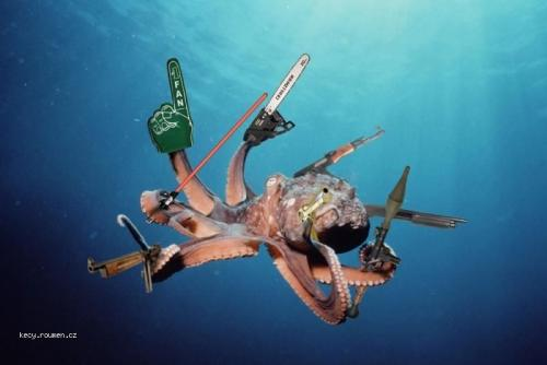 tactical octopus