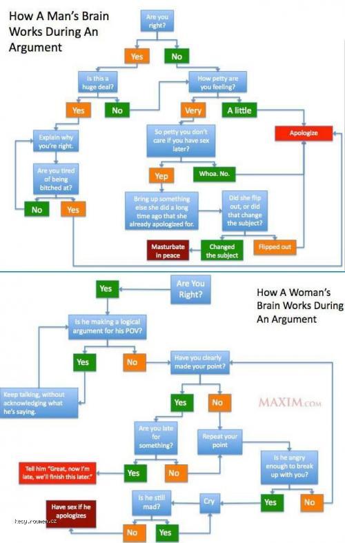 argument brain