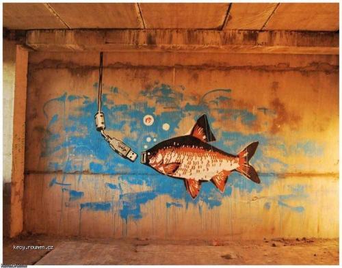grafiti kapr