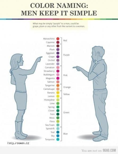 farby zena vs