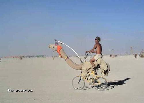The bike is a camel  Why bike becomes camel