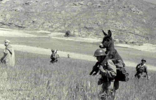 Z historie army transport