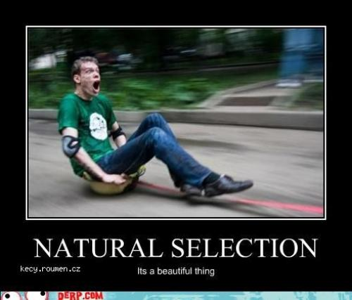 demotivational selection