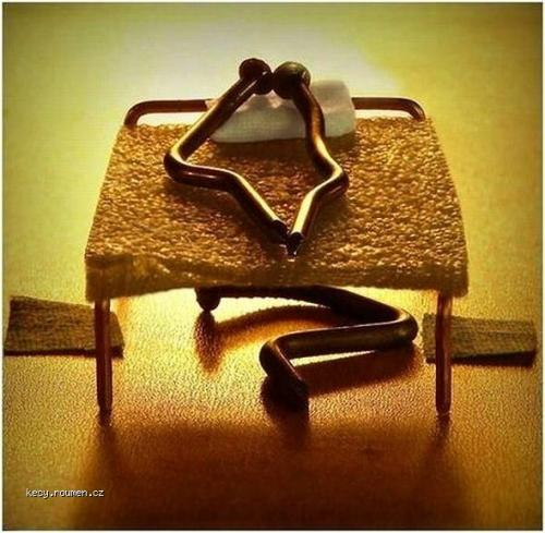 Creative Photography5