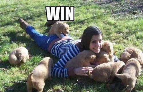 Men 2C dogs they all the Same Epic Win