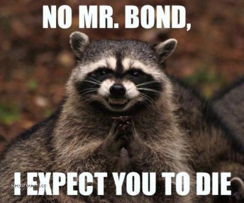 No Mr Bond