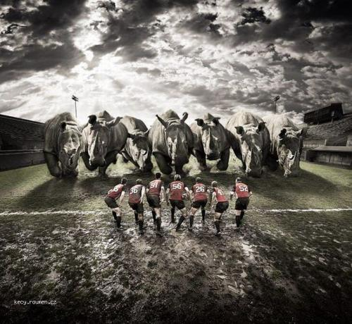 rugby bez pravidel