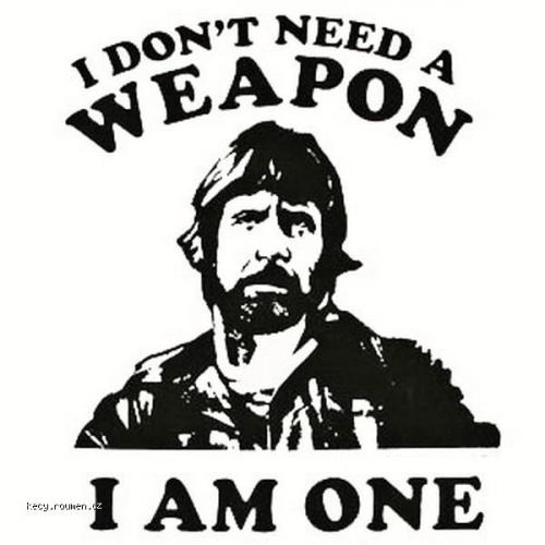 The chief export of Chuck Norris is pain