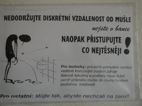 cedulka