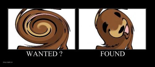 wantedfound