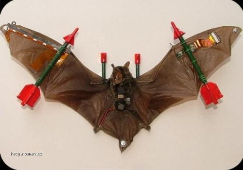 fighter bat