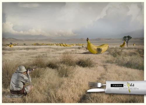 bananove safari