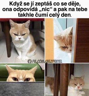 Horké nahé kočička kurva