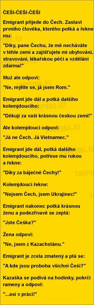 Imigranti v ČR