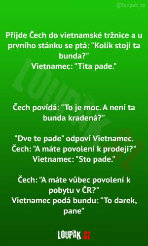 Přijde Čech do vietnamské tržnice