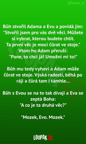 Bůh stvořil Adama a Evu