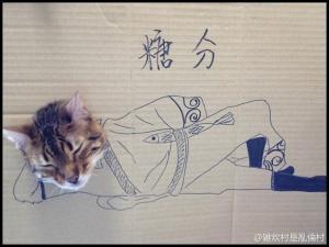 Kočičí kostým