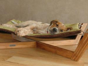 Unavené štěně