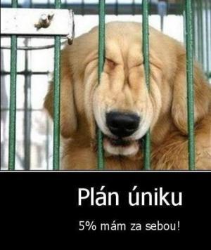 Plán uniku