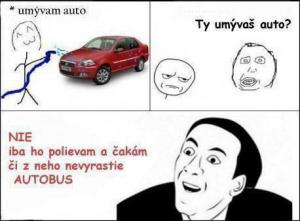 Umyté auto