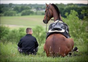 Koňský rozhovor