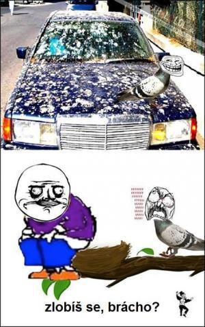 Posrané auto