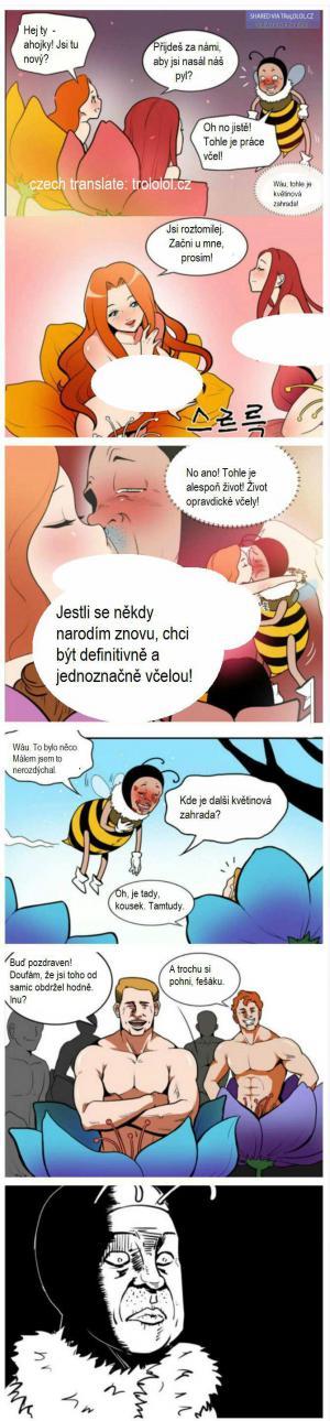Život včeláka