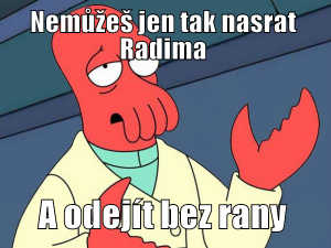 Nasraný Radim