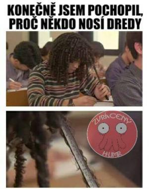 Dredy