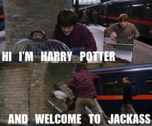 Hi im Harry Potter and....