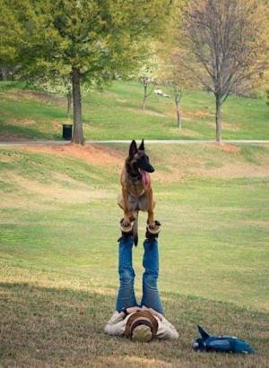 Hrátky se psem