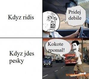 Řidič vs. chodec
