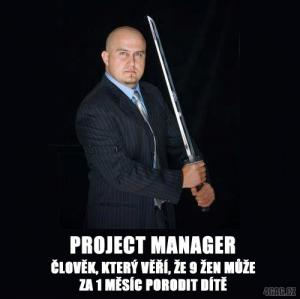 Projekt manažer