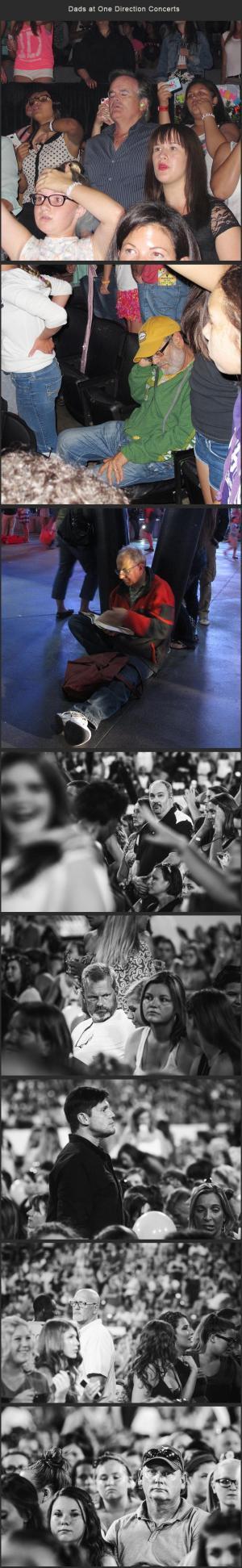 Otcové na koncertech One Direction