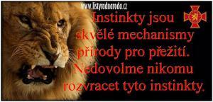 Instinkty