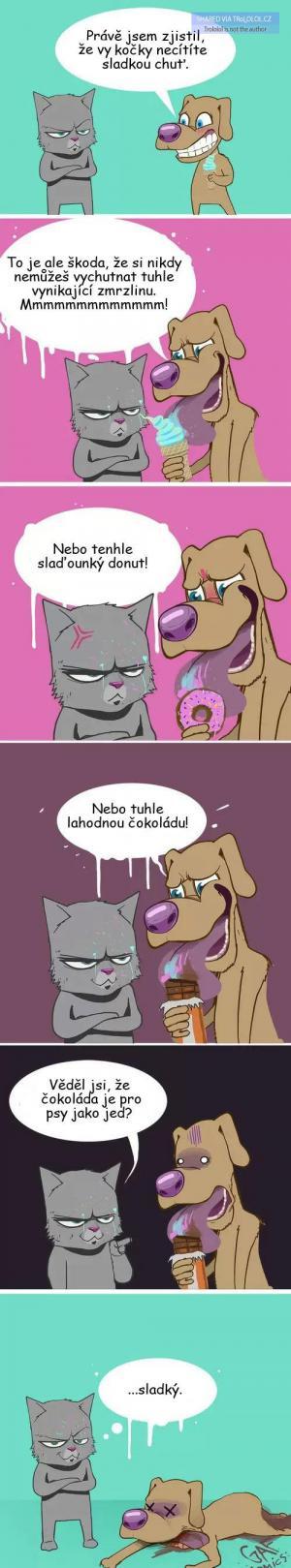 Kočky a sladkosti