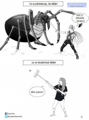 Souboj s pavoukem