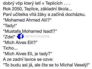 Mich Alves Eli