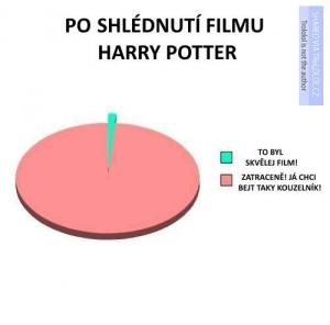 Poté, co shlédnete Harryho Pottera
