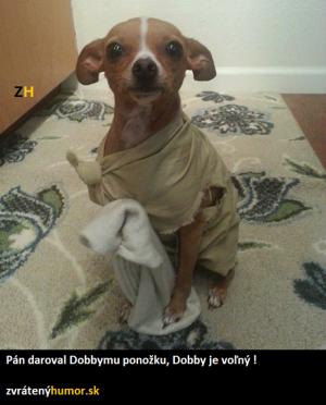 Dobby je volný!