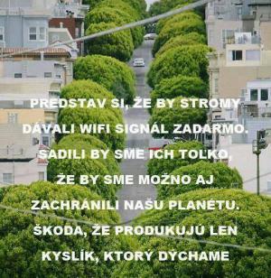 Stromy by dávaly i internet