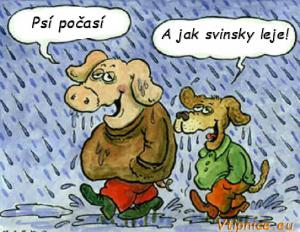 Psí počasí ..