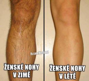 Dámské nohy