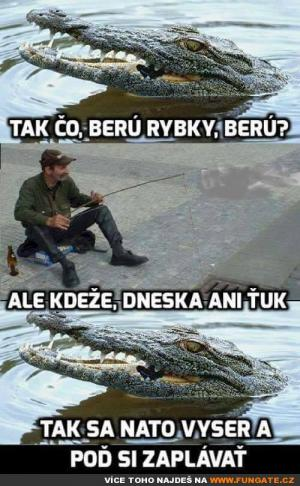 Tak co, berou ryby, berou