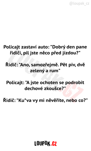 Policajt a řidič