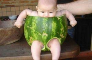 Prcek v melounu