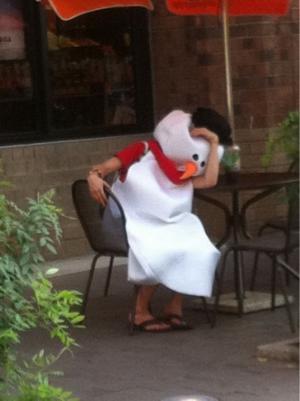 Nešťastné kuře