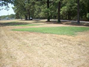 Efektivní zavlažování trávníku