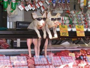 Zvířecí prodavači
